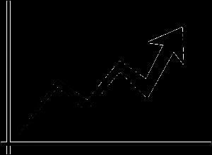 Der Aktienmarkt in Indien